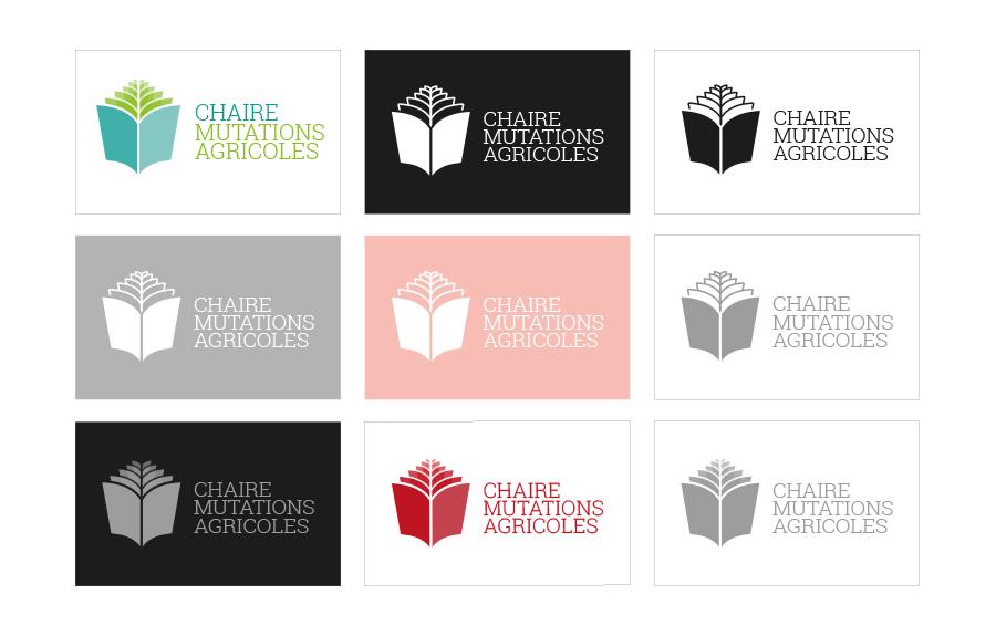 chaire_grafico_3